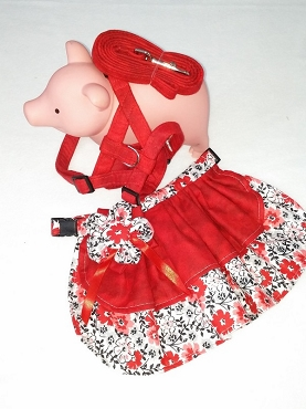 Medium Mini Pig Skirt  With Harness/leash -1133