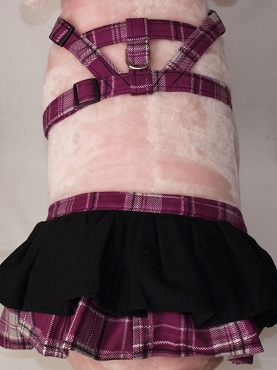 Large Mini Pig Skirt  With Harness/leash